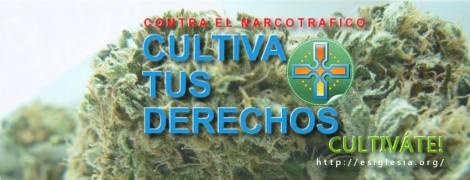 circa_reverendo